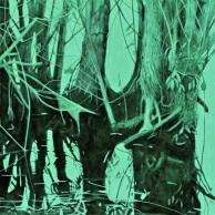 Dark Tree Reflections